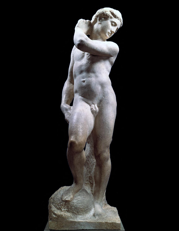 NGA | Michelangelo's David-Apollo