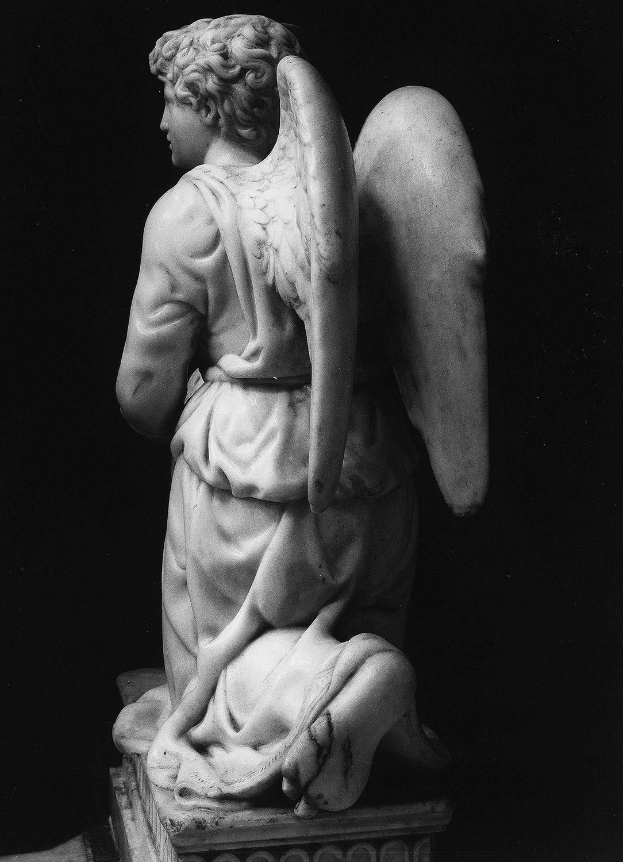 angel-bolonia-07